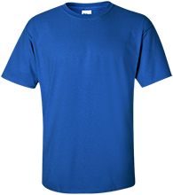 Danby Rush Tower Middle School Blue Jays Custom Adult Ultra Cotton T-Shirt
