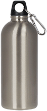 Team Granite Arch Rock Climbing Silver Aluminum Water Bottle