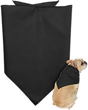 Destiny Day Spa & Salon Salon Doggie Bandana