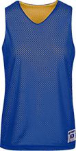 Saint John The Baptist School School Ladies Practice Jersey