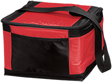 Jamesville DeWitt High School Red Rams 12-Pack Cooler