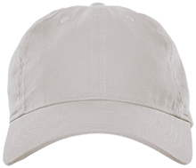 Delaware Township Elementary School Wildcats Brushed Twill Dad Cap