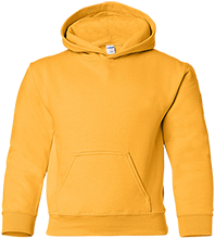 Illini Central High School Cougars Youth Pullover Hoodie