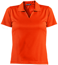 Amity Elementary School Groundhogs Ladies Dri-Mesh Short Sleeve Polos