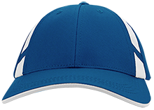 Burncoat Elementary School Panthers Dry Zone Mesh Inset Cap