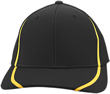 Pioneer Valley Regional School Panthers Flexfit Colorblock Cap