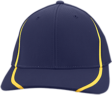 Birdneck Elementary Eagles Flexfit Colorblock Cap