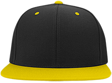 Arlington Park Elementary Panthers Flat Bill High-Profile Snapback Hat