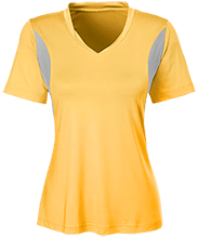 Del Val Wrestling Wrestling Team 365 Ladies All Sport Jersey