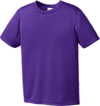 Duanesburg Central High School Eagles Youth Moisture-Wicking Shirt
