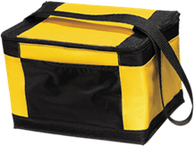 Brightwood Elementary School Tigers 12-Pack Cooler